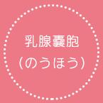 乳腺嚢胞(のうほう)